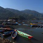 Boats, Phewa Tal, Pokhara by wiggyofipswich