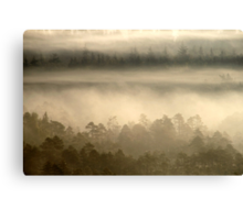 18.9.2014: Forests in Fog Canvas Print