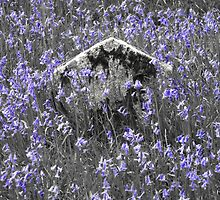 Bluebells mark the end of days by Yampimon