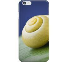 Snail with shell on leaf in detail iPhone Case/Skin