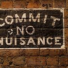Commit no Nuisance by Adam1965