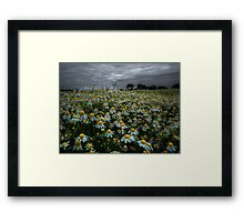 The Beauty of Wild ~ Oregon Wildflowers ~ Framed Print