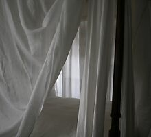 Washington's Bed by Gilda Axelrod