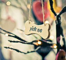 Pick me message on small wood board, vintage concept by Stanciuc