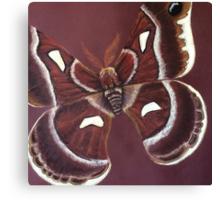 AutumnMoth Canvas Print