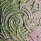 carved stone - iphone case by Babz Runcie