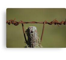 the old fence post Canvas Print
