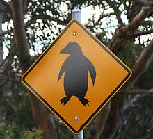 Watch out for penguins! by Leanne Davis