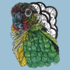 Green Cheeked Conure by HiddenStash