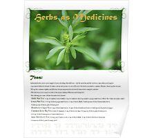 Herbal Calendar Teas- Cover Poster