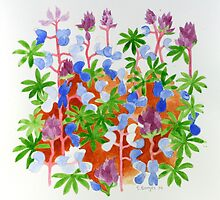 Lupin wildflower by Stephen Borges