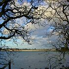 View From Hayling Island to the Road Bridge by lezvee