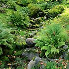Old park in September by Bluesrose