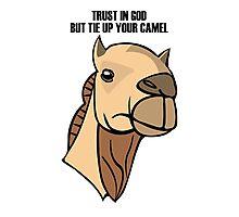 Camel Head Photographic Print