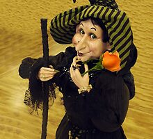 Witch With Rose by Kenneth Hoffman