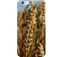 Ear of wheat iPhone Case/Skin