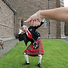 Under the Thumb by dgscotland