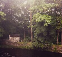 Kells Water River County Antrim Northern Ireland by Zdrojewski