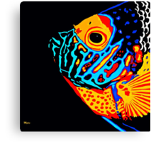 Angel Fish Swimming in the Deep Canvas Print