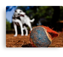 Bite Me, A Memoir: Adventures Of A Tennis Ball At The Dog Park. Canvas Print