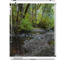 Low Water ~ Whittaker Creek ~ iPad Case/Skin