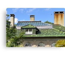 A Roof with Age and Character Canvas Print
