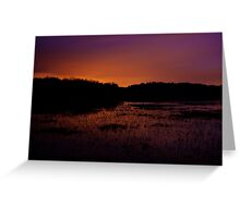 Lavender haze of night – Great Meadows series Greeting Card