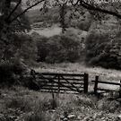THE GATE TO THE YORKSHIRE DALES by leonie7