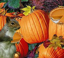 ❀◕‿◕❀SQUIRREL-PUMPKINS-AND PUMPKIN PIE-HAPPY UPCOMING THANKSGIVING TO ALL CANADIANS ON THIS DAY OF THANKS AND REFLECTION❀◕‿◕❀ by ╰⊰✿ℒᵒᶹᵉ Bonita✿⊱╮ Lalonde✿⊱╮