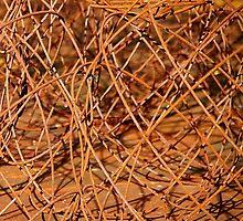 Rusty world by Bluesrose