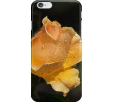 Summer Roses - Misty Orange-Gold iPhone Case/Skin