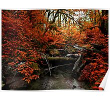 The Fall ~ Oregon Fall Colors ~ Poster
