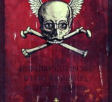 The Supernatural Pirate by Sybille Sterk