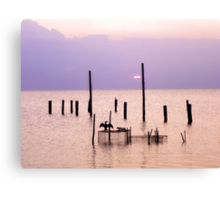 Bathing in the colors of sunset Canvas Print
