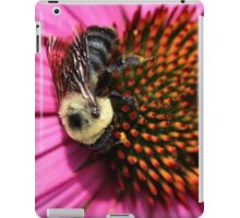 Bumble Bee and Cone Flower iPad Case/Skin