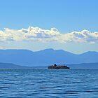 Deep Blue Sea by Lesliebc