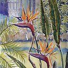 Strelitzia by Virginia  Coghill