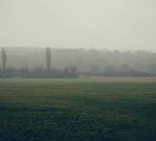 Sleepy & Foggy England by Rekha Garton