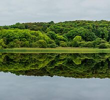 Lough Gill, Co. Sligo/Co. Leitrim, Ireland by Mark Bangert