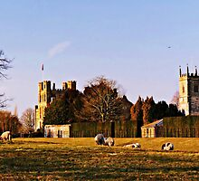 Coughton Court Estate. by ScenicViewPics