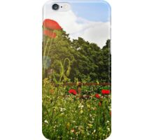 Sun kissed poppies iPhone Case/Skin