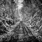 Dark Path by darkedinburgh