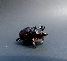 03 Stag Beetle by ptosis