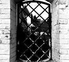 window by Krzyzanowski Art