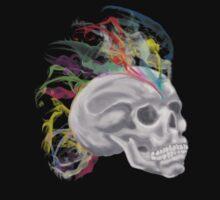 smoke rainbow skull by suisiadh-3Gaels