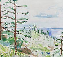Norfolk Pines, Bucks Point by John Douglas