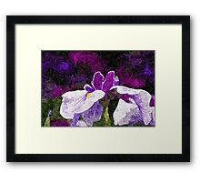 Painterly Purple Single Iris Flower in Early Summer Framed Print