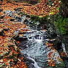Cascading Autumn Stream by Kenneth Keifer