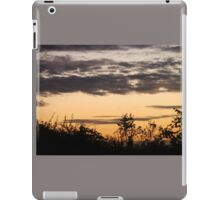 Plants and the Sky Backdrop iPad Case/Skin