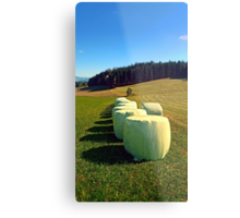 Marshmallows for cows | landscape photography Metal Print
